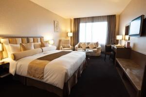 台北花園大酒店 Junior Suite 精緻套房